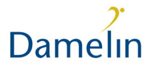 Damelin_Logo-300x134
